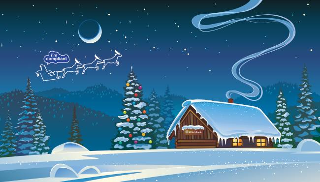 domeba wünscht ein frohes Fest und einen guten Rutsch ins neue Jahr!