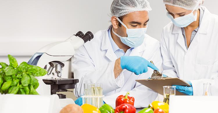 HACCP-Konzept Lebensmittel Hygiene
