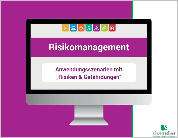 domeba E-Book Risikomanagement
