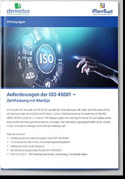 domeba Whitepaper ISO 45001