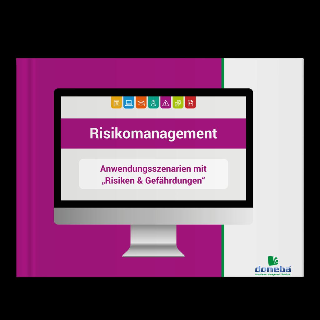 E-Book Risikomanagement: Anwendungsszenarien mit Risiken & Gefährdungen