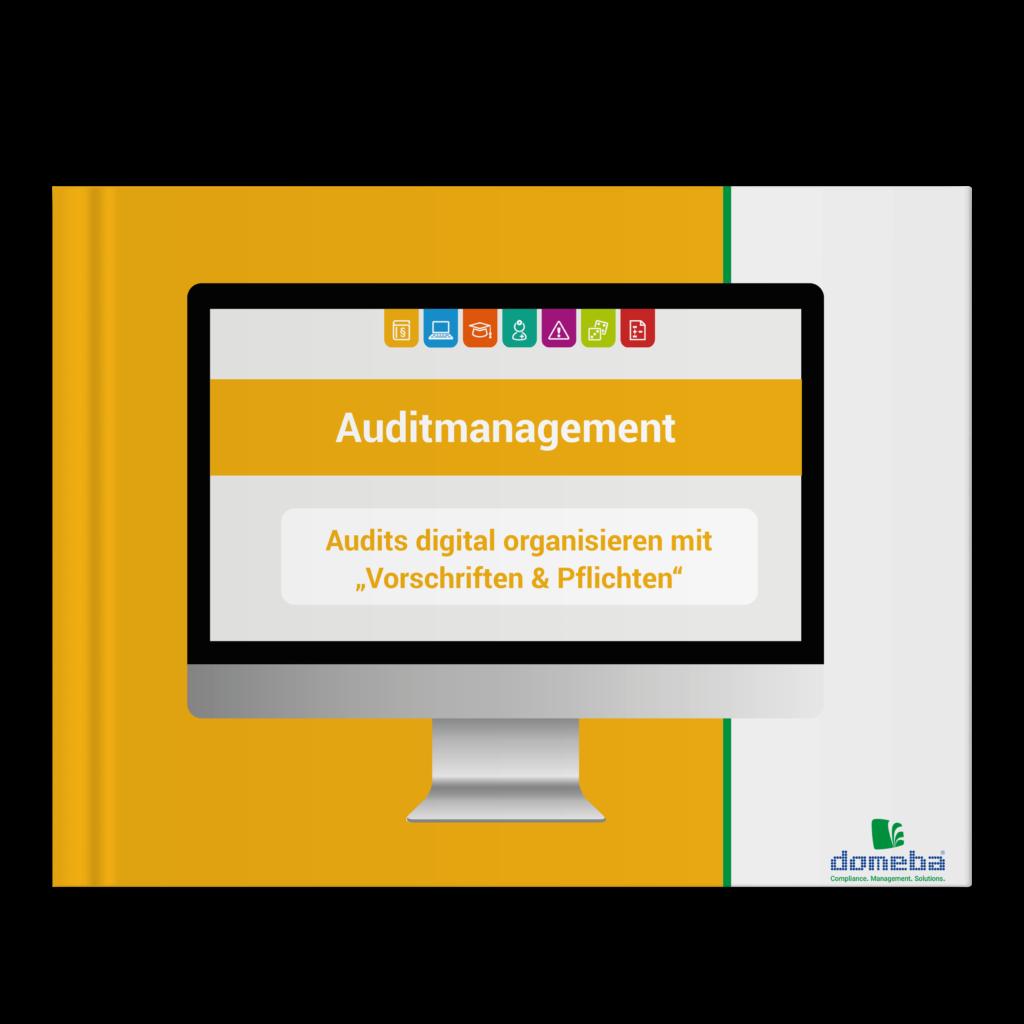 E-Book Auditmanagement: Audits digital organisieren mit Risiken & Gefährdungen
