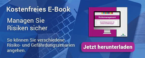 E-Book Download Risikomanagement